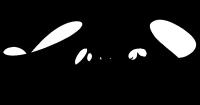 robert's-signature